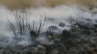 burnt ground