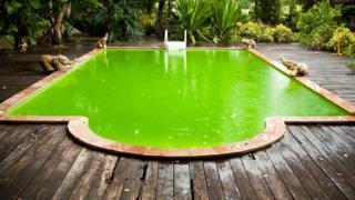 Piscina com água verde