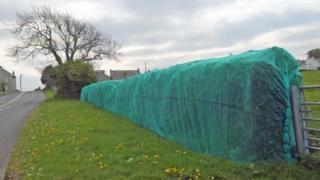 A hedgerow covered in plastic netting