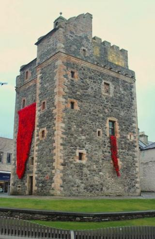 Poppies at Castle in Stranraer