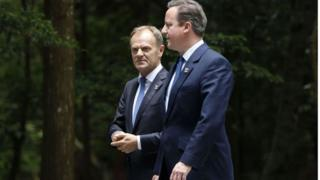 Brexit: David Cameron warned by Donald Tusk over  stupid referendum