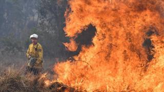 A firefighter next to a fire at Long Gully Road in northern New South Wales on 9 September