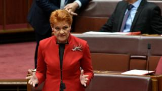 Pauline Hanson addresses the Senate at Parliament House on November 28, 2017 in Canberra, Australia