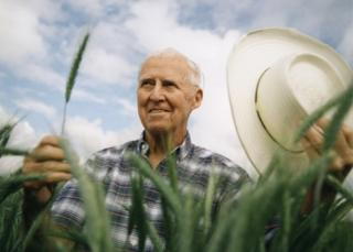Norman Borlaug pictured in a wheat field