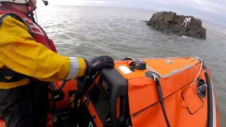lifeboat and dog