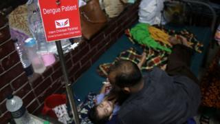 ঢাকার একটি হাসপাতালে ডেঙ্গু রোগীদের চিকিৎসা চলছে