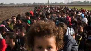 A column of migrants moves through fields after crossing from Croatia, in Rigonce, Slovenia, Sunday, Oct. 25, 2015