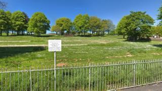 Skewen Park