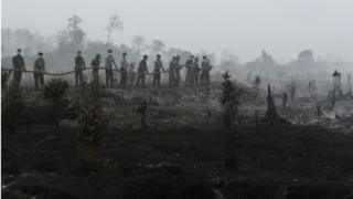 Firefighters tackle a forest fire in Riau province, Indonesia (29 August 2016)