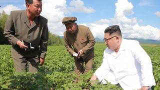 Bukan hanya di Korea Selatan, Pemimpin Besar Kim Jong-un juga mendorong para pekerja dengan slogan 'kecepatan mallima' atau kecepatan sangat tinggi.
