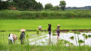 အီးယူမြန်မာ
