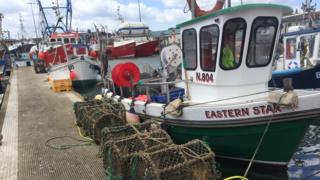 Some of the fishing boats in Portavogie Harbour