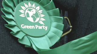 Green Party rosette