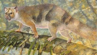 Artist's rendition of Microleo attenboroughi