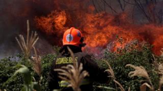 Bombero frente a enormes llamas en un bosque.