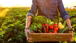 Hombre llevando una caja de madera con verduras.