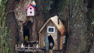 Gnome home on a tree