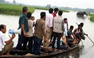 Bangladesh wildlife officials look on from a boat as they observe a wild elephant in a watercourse at Sarishabari in Jamalpur District some 150kms north of Dhaka
