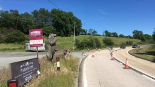 Photo of the bear stood at the roadside