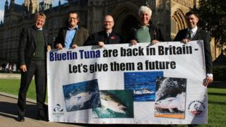 Campaigners for a catch-and-release tuna fishery outside of the Houses of Parliament on Wednesday 31 October 2018