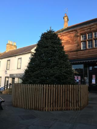 Borders towns see Christmas trees shrink by a third