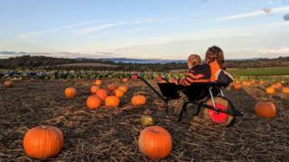 Eve-Marie Josse's kids in a pumpkin patch wheelbarrow