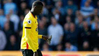 Watford's M'Baye Niang picks up a bird on the pitch during the Premier League match against Manchester City.