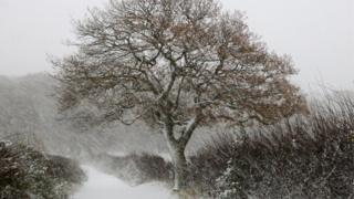 Снежный шторм в Йоркшире