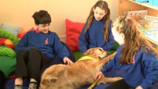 Dog and pupils at Crown Primary
