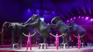 The-Gartner's-training-elephants-family-performs-during-the gala-of-the-43th-Monte-Carlo-International-Circus-Festival-in-Monaco