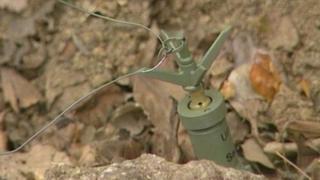 Landmine in former Yugoslavia taken 17 August 1992