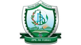 Dambi Dolloo University