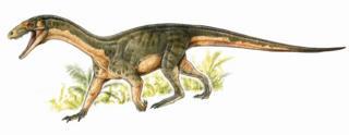Dinosaur relative