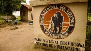 Àwòràn Virunga National Park