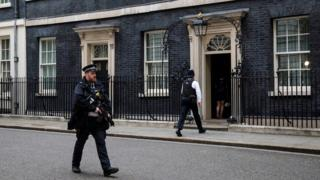 Armed officer outside Downing Street