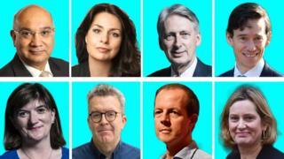 Clockwise from top left: Keith Vaz, Heidi Allen, Philip Hammond, Rory Stewart, Amber Rudd, Nick Boles, Tom Watson and Nicky Morgan