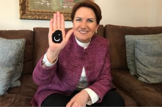 Meral Aksener with a Turkish flag painted in henna on her palm