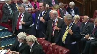 Peers gather as the vote is announced