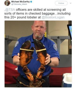 مامور امنیتی فرودگاه به همراه خرچنگ
