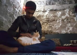 Salah's cats