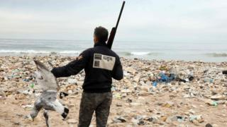 "Hunters shoot down seagulls that are attracted by the garbage at the Costa Brava dump, on January 14, 2017 near Beirut""s International Airport"