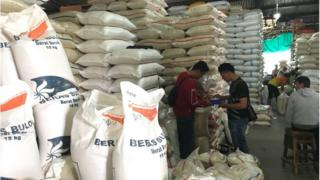 Kementerian Pertanian menjamin pasokan beras aman hingga panen raya mendatang