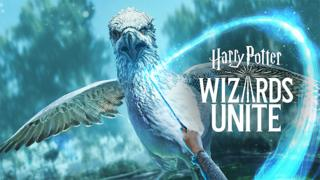 A poster of a bird with Harry Potter Wizards Unite written on