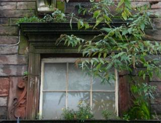 Inappropriate growth of vegetation on Edinburgh building