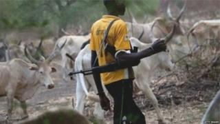 Five pipo na im don die for di clash between Herdsmen and Mambilla ethnic group.