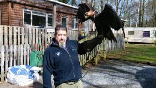 mike gibb and griff the golden eagle