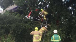 Fire crew using a ladder