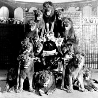 Frank C Bostock and some lions