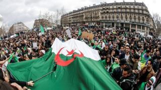 Cezayir'de protestolar haftalardır sürüyor