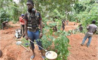 Gold diggers work near Bore village near Dimbokro in central Ivory Coast - Monday 15 August 2016